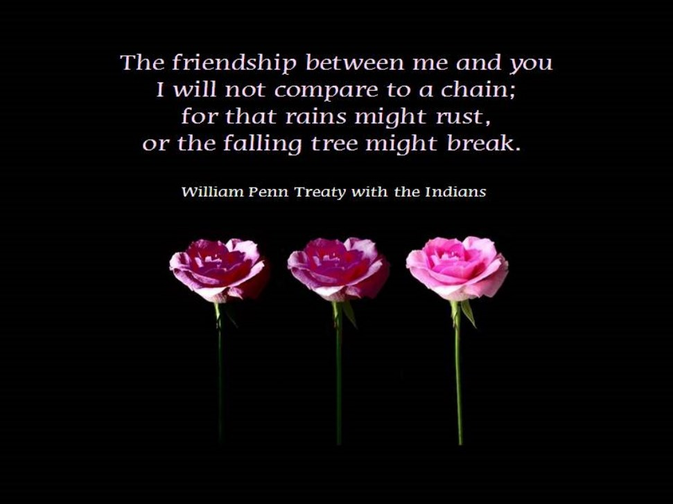 Quotes about Friendship with pictures 21 quotes