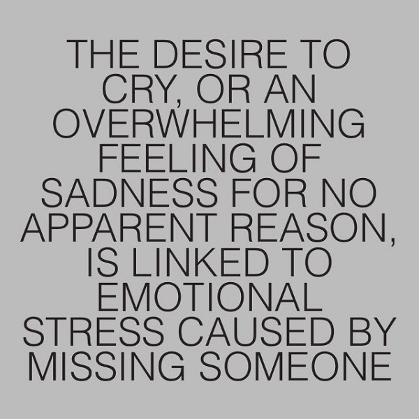 Quotes About Missing Someone 69 Quotes