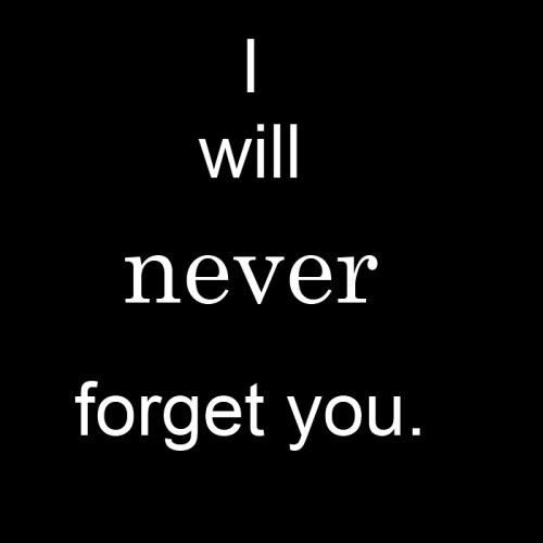 the incident i will never forget Memorable incident in my life the pain lingers in my memory also this memory was one i will never forget i also make sure my sister will never forget it as well.