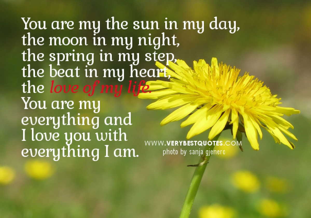 Quotes About Love Of My Life 563 Quotes