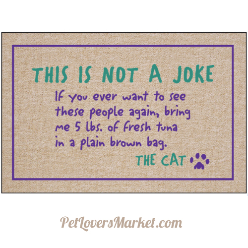 Quotes about Alley Cats (15 quotes)