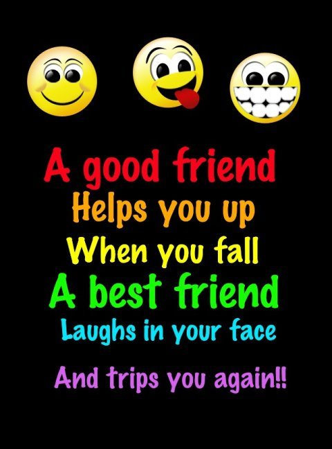 Quotes about Funny friendship and life (14 quotes)