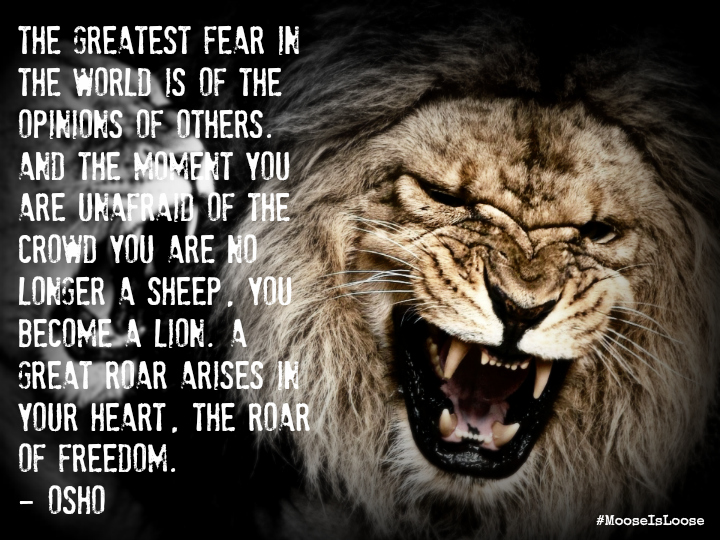 Quotes About Roar 177 Quotes