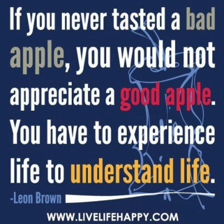 Quotes about Bad experience (129 quotes)