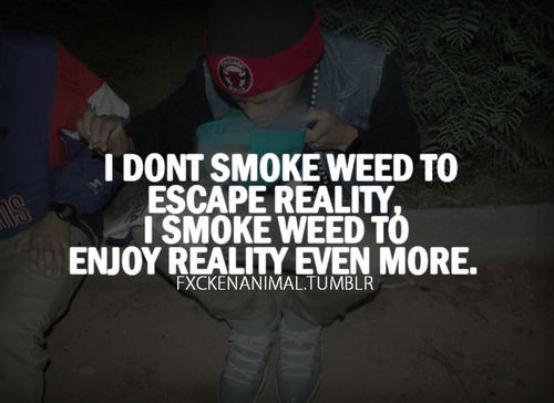 Quotes about Smoking Weed (57 quotes)