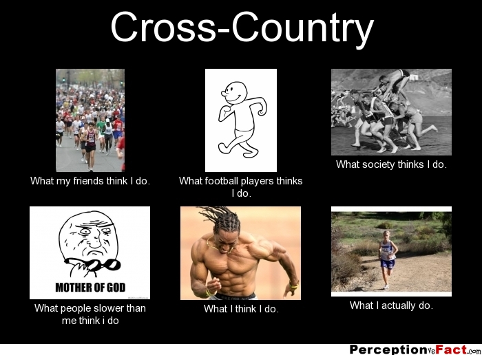 Quotes about Cross country team (18 quotes)