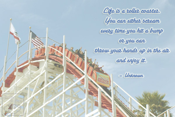 Quotes About Roller Coaster 129 Quotes