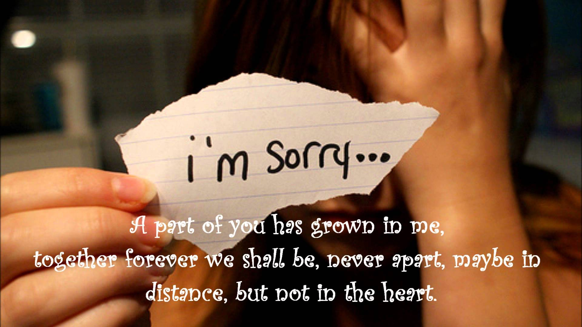 Quotes about Am Sorry 137 quotes