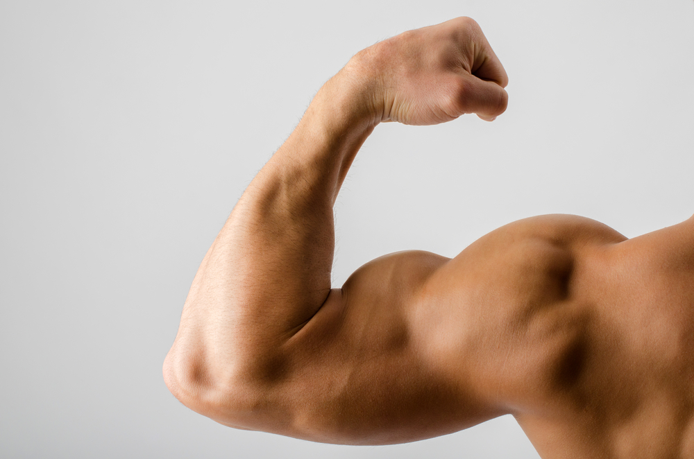 Quotes About Muscular Arms 22 Quotes