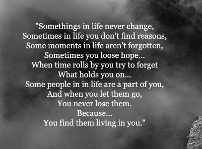Quotes About Never Change 481 Quotes