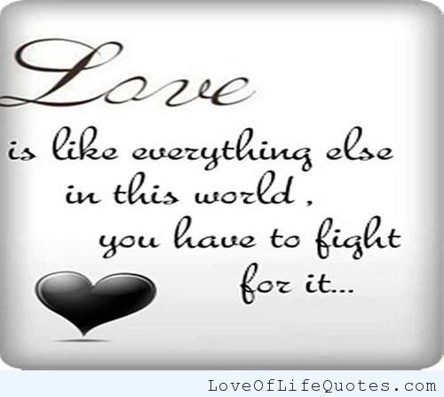 Fighting For Love Quotes Mesmerizing Love Fight Quotes Classy 48 Top