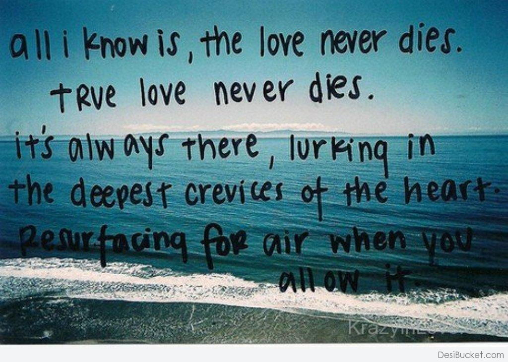 Never can true die love If It