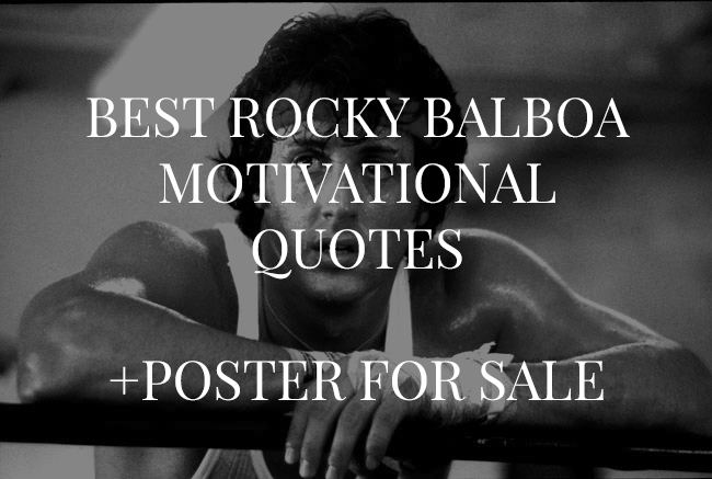 Quotes About Rocky 196 Quotes