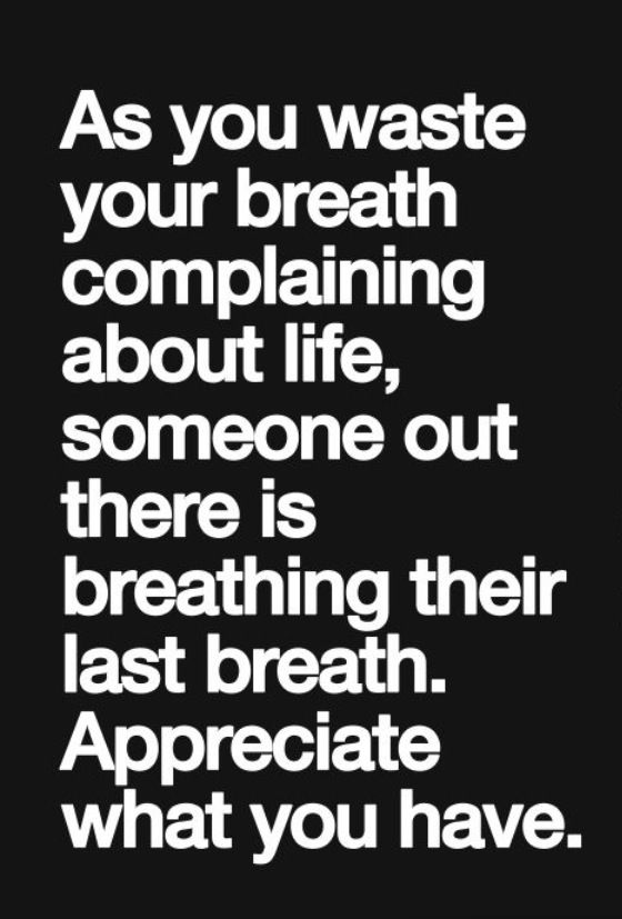 Quotes About Appreciating Life And Health 16 Quotes