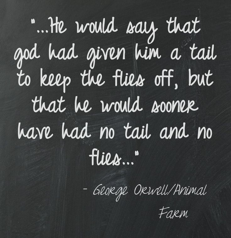 quotes from george orwells animal farm George orwell, the author of animal farm, favors socialism and he strongly opposed communism (totalitarian regime) he wrote animal farm, which.