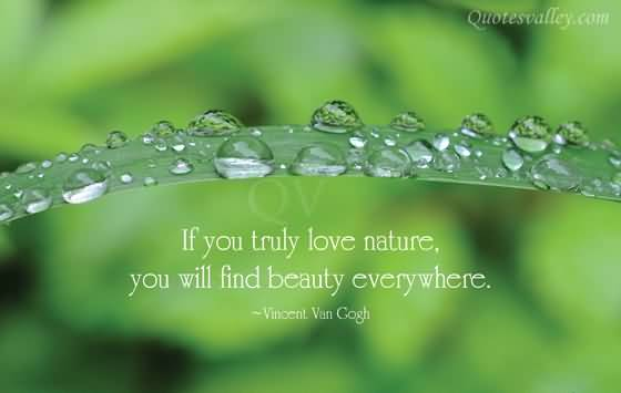 Quotes About Nature Of Love 311 Quotes