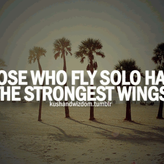 Quotes About Flying: Quotes About Flying Solo (27 Quotes