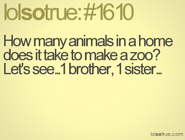 Quotes About Brother Funny 43 Quotes