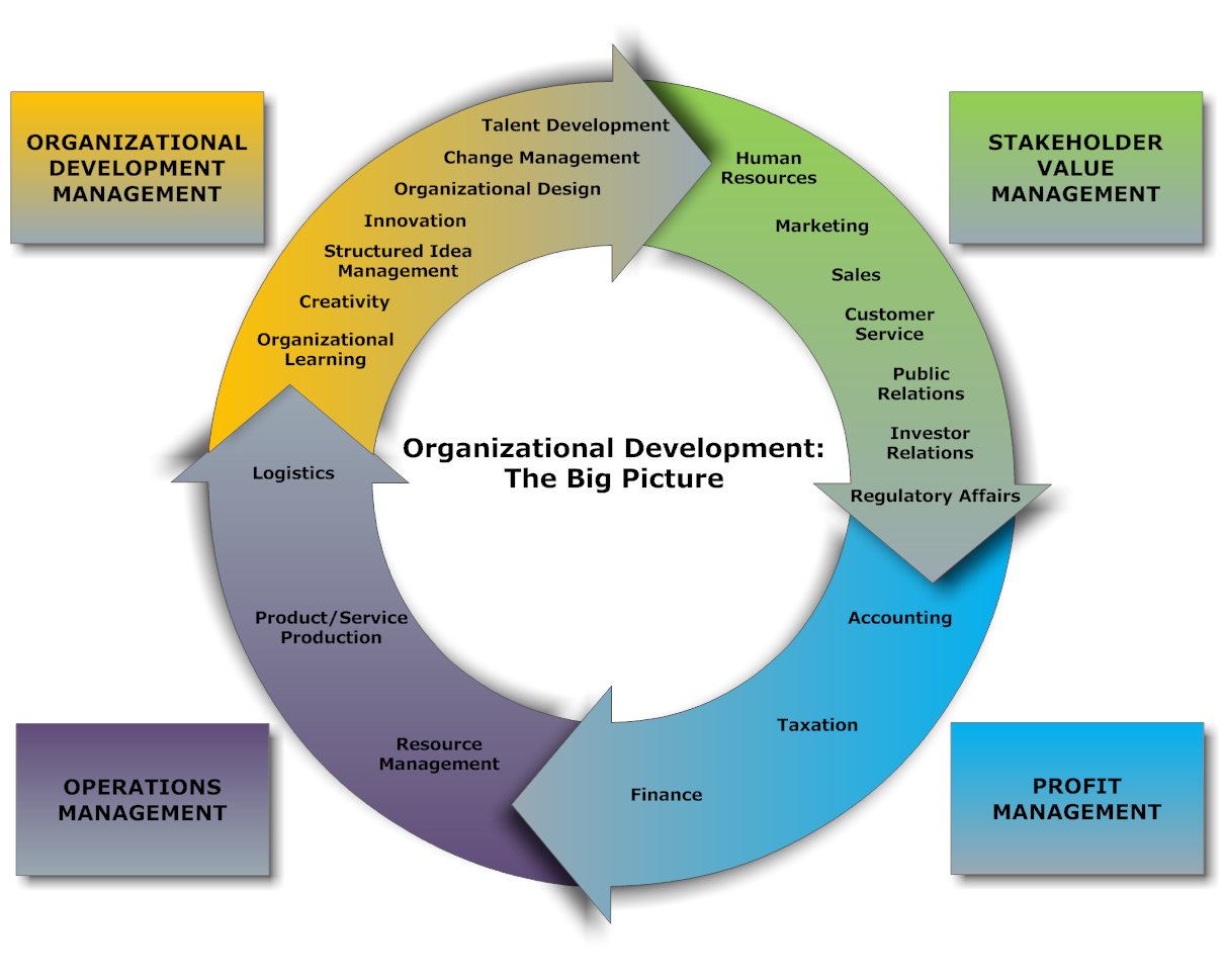 an analysis of developing management skills in an organization