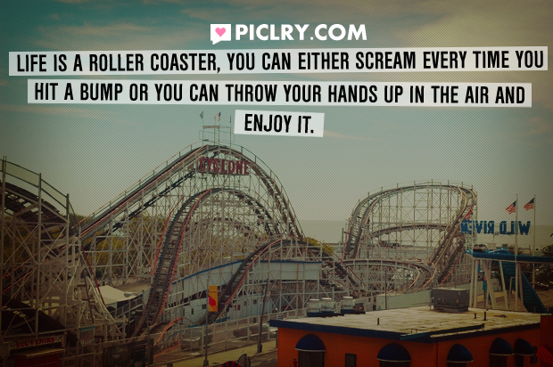 Quotes About Roller Coaster 119 Quotes