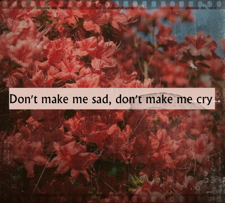 quotes about blue flowers quotes