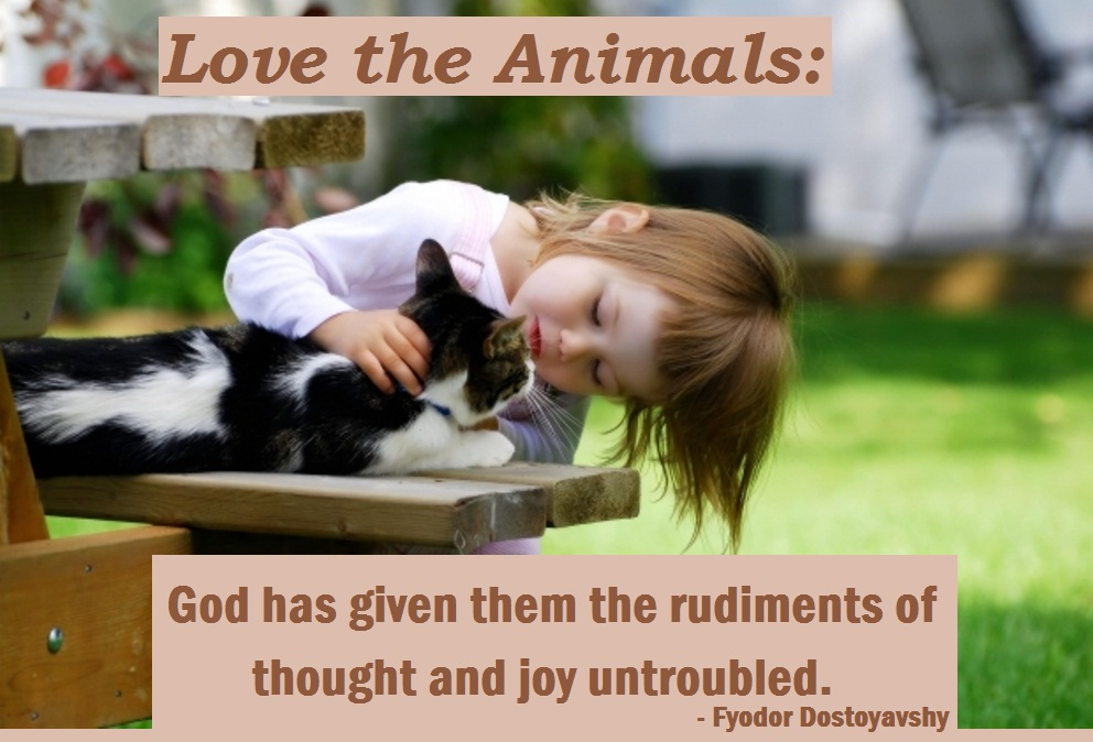 The Animals: God Has Given Them The Rudiments Of Thought And Joy  Untroubled.   Fyodor Dostoyavshy