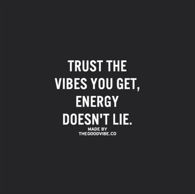 Quotes about Good Vibes 53 quotes