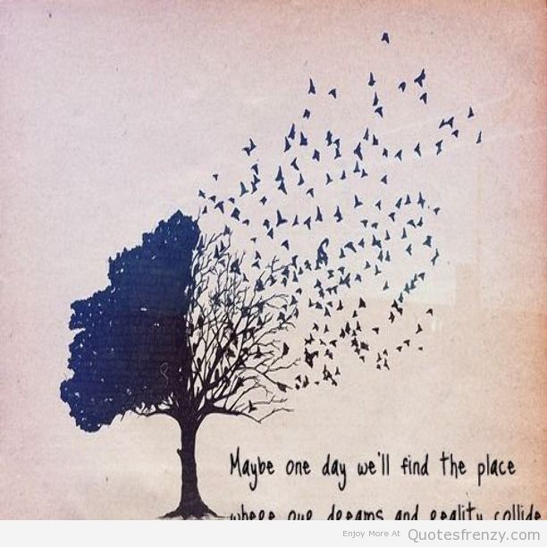 Quotes About Lost Birds 28 Quotes