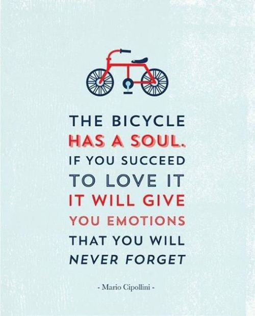 Bike Quotes: Quotes About Old Bicycle (49 Quotes