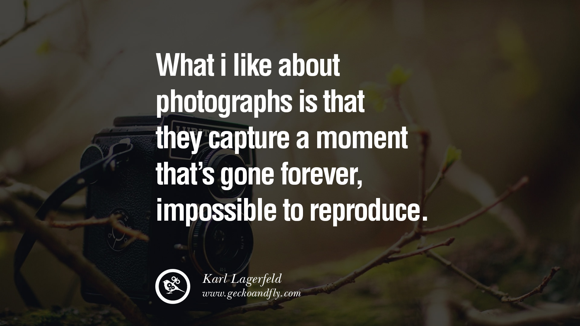 Quotes About Photography Capture Moment 23 Quotes