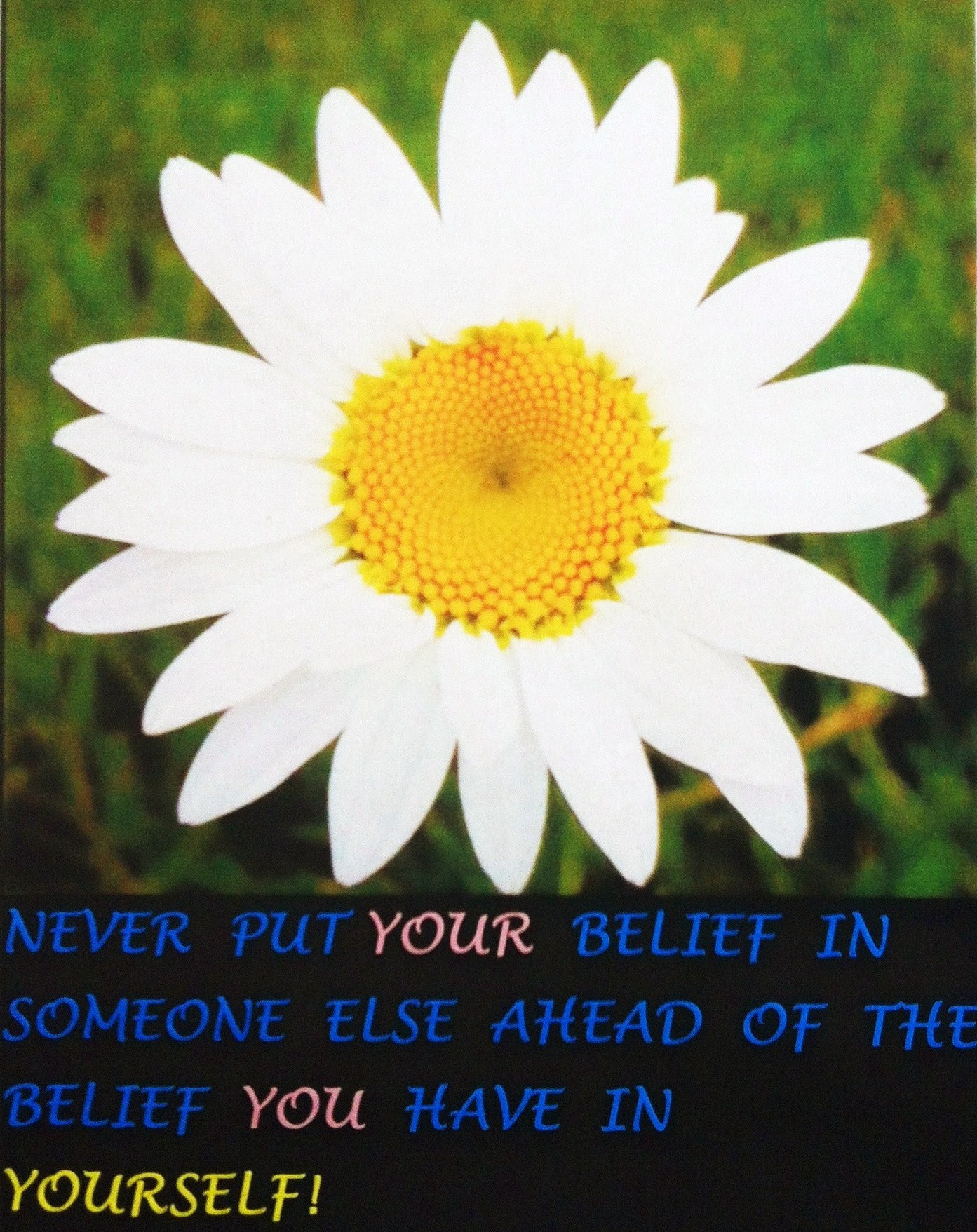 Quotes about Daisy (91 quotes)