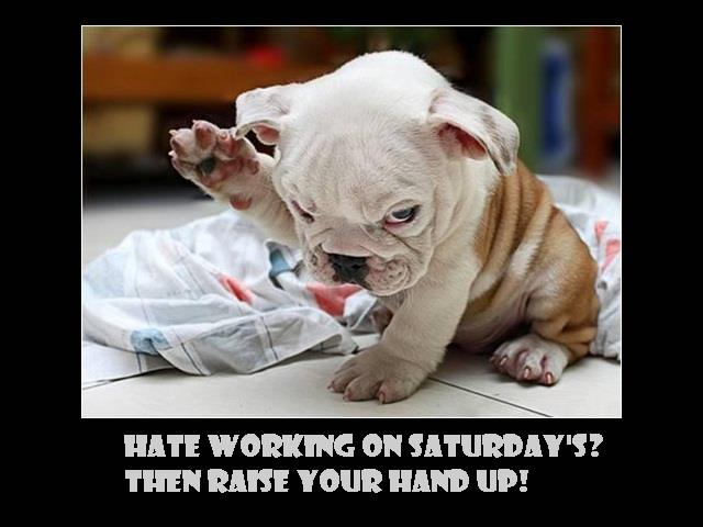 Quotes about Work on saturday (46 quotes)