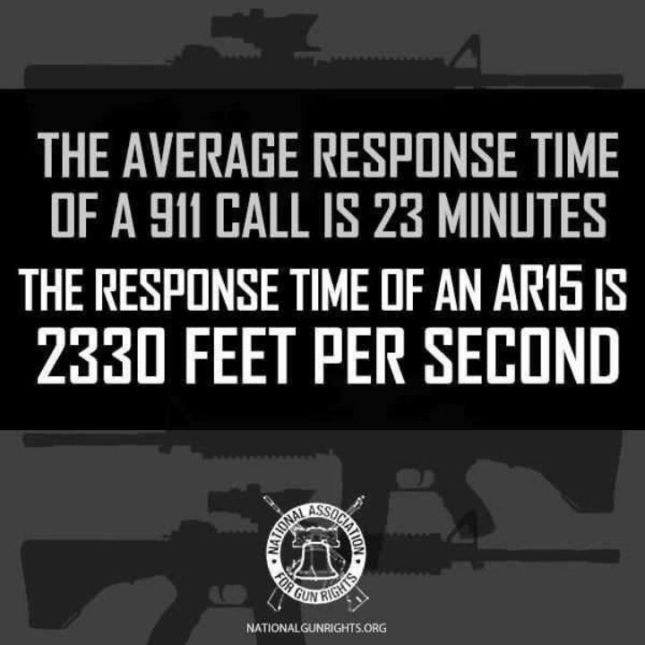 Quotes about Pro Gun 34 quotes