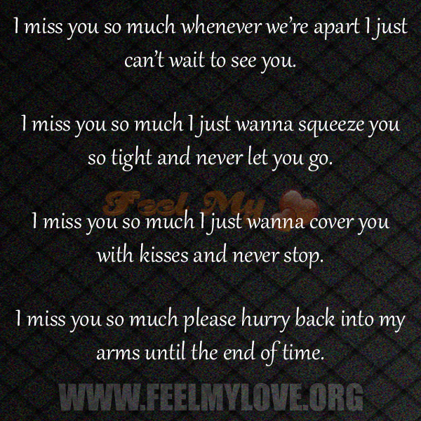 Quotes About I Miss You So Much (21 Quotes