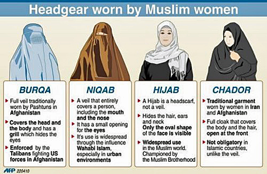 Its Not About The Burqa Quotes