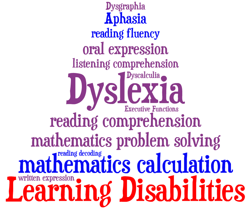various learning disabilities Learning disabilities fall into broad categories based on the four stages of information processing used in learning: input, integration, storage, and output input this is the information perceived through the senses, such as visual and auditory perception.