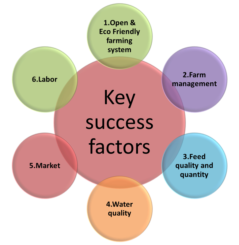 the key success factors in marketing Key success factors by their very nature are so important to future competitive success that all the firms in the industry must pay close attention to them or risk becoming uncompetitive.