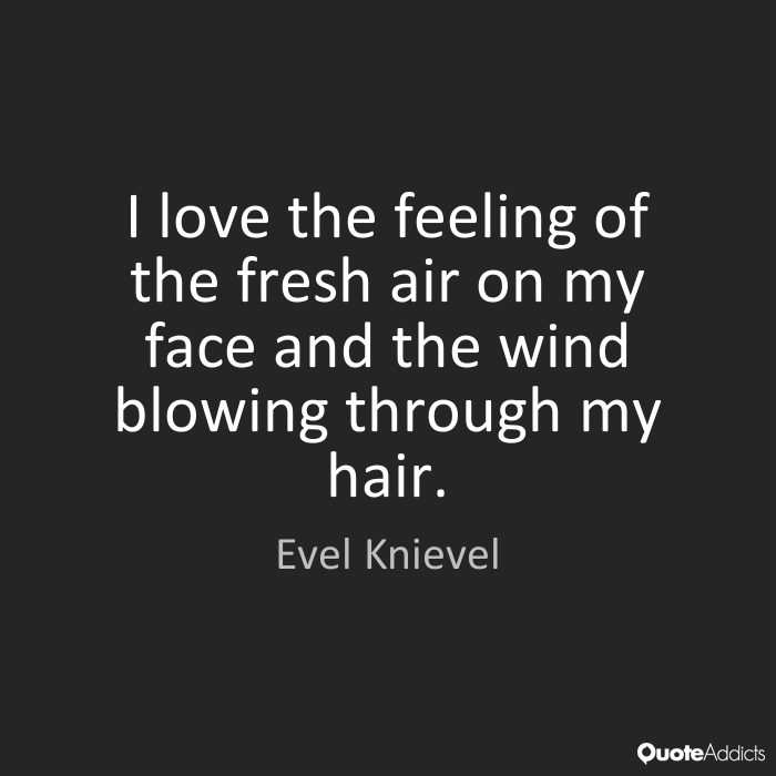 Quotes About My Hair 869 Quotes