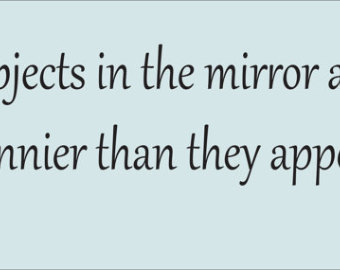 Quotes About Mirror 527 Quotes