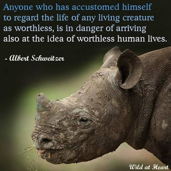 Animal Abuse Quotes By Famous People: Quotes About Animal Rights Activists (34 Quotes