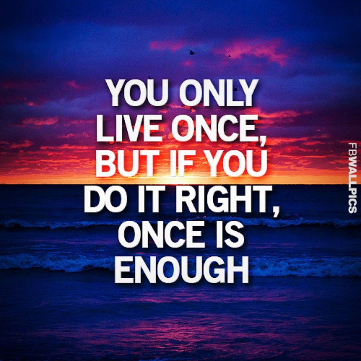 Quotes about Only live once (4 quotes)