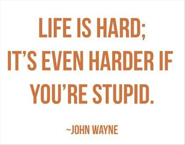 Image result for quotes of stupid