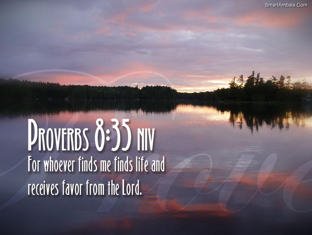Bible Verses Quotes About Life Mesmerizing Quotes About Death Bible Verses 19 Quotes