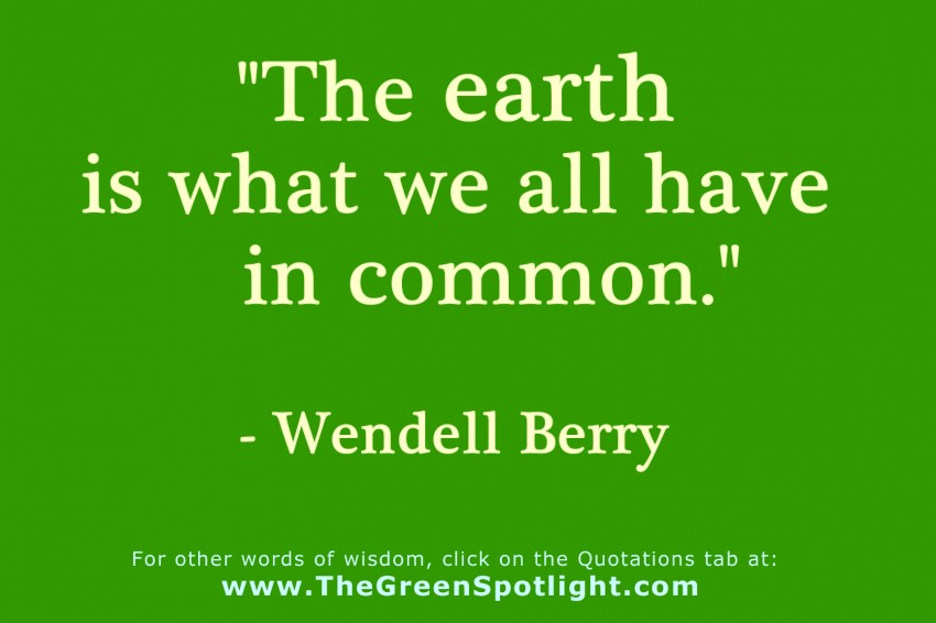 Quotes about Environmentalist (99 quotes)