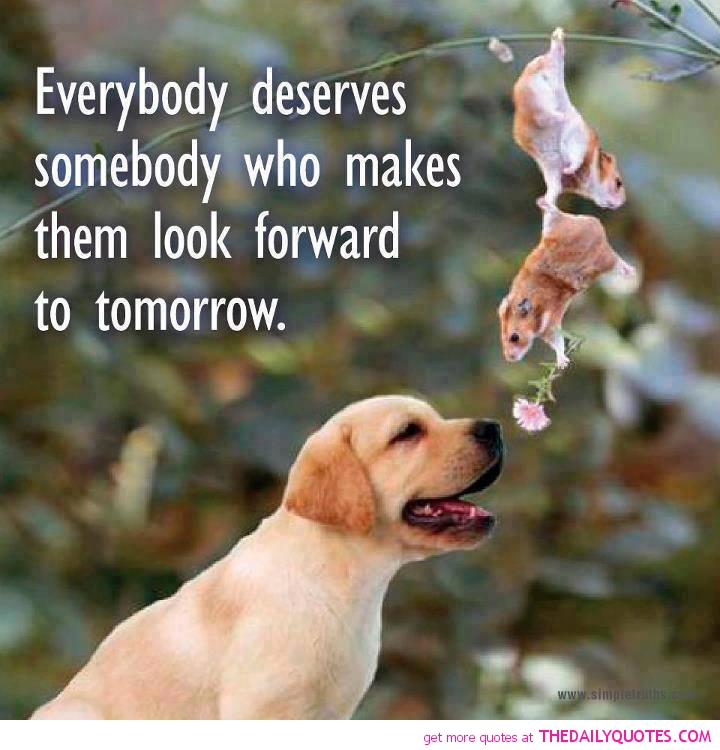 Quotes About Cute Animals 38 Quotes