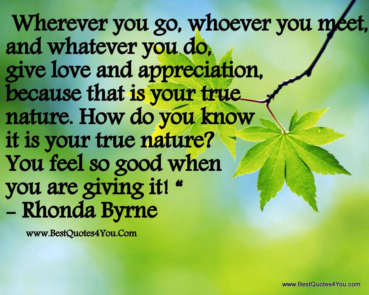 Adyashanti Quotes 93 True Nature Quotesquotesurf