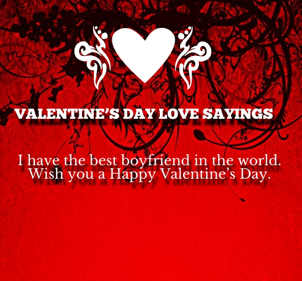 Quotes About Valentines Day For Boyfriend 60 Quotes Adorable Valentines Day Love Quotes