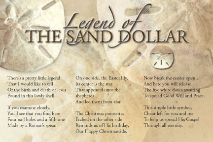 picture about The Legend of the Sand Dollar Printable known as Offers around Sand Greenback (18 rates)