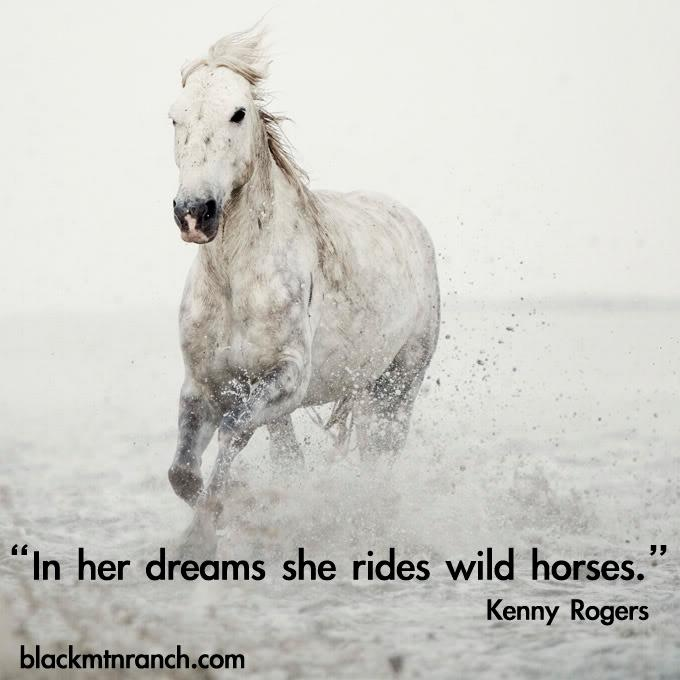 Quotes about Galloping Horses (60 quotes)