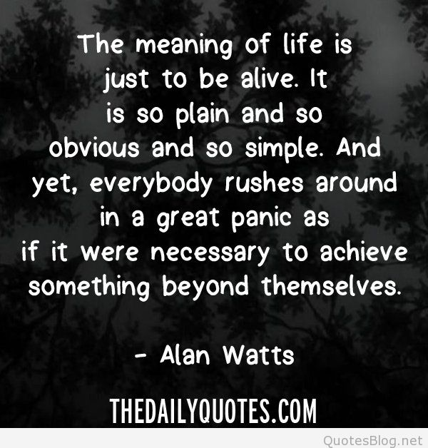 Quotes About Meaning Life 60 Quotes Unique What Is The Meaning Of Life Quotes